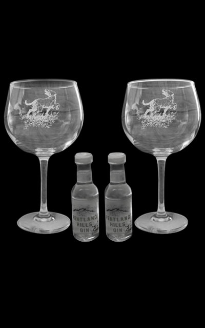Our Gin Glass Set