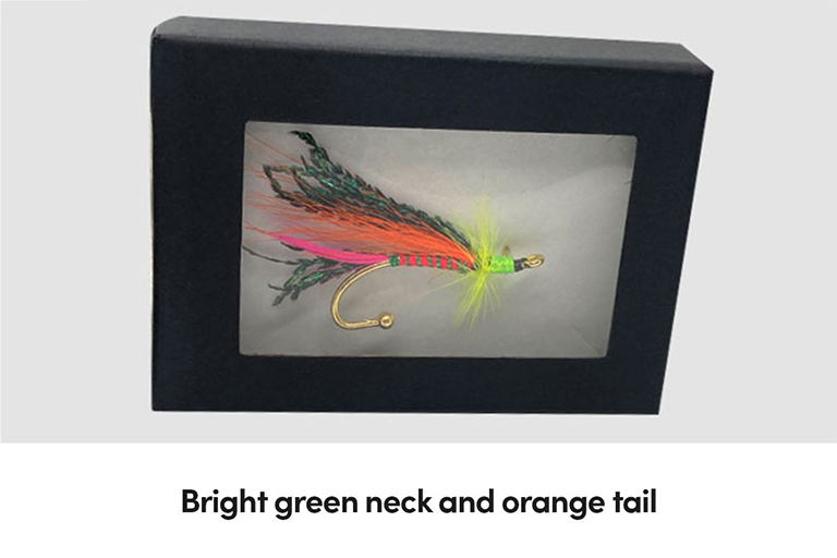 Bright green neck and orange tail
